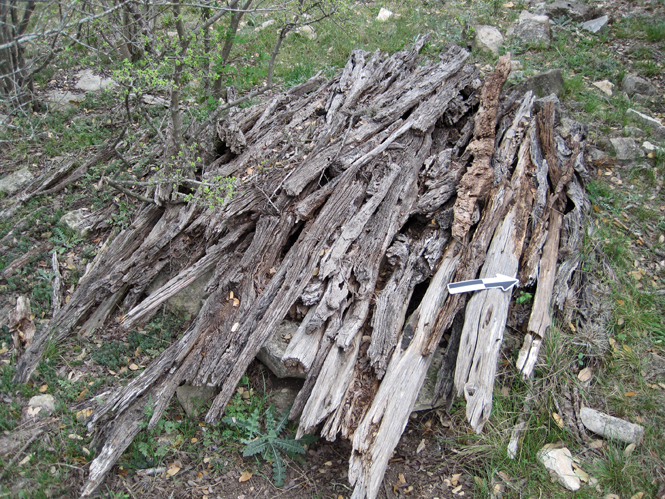 lumber sheperds home95dpi